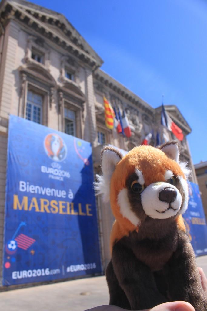 Panda v Marseille