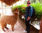 Blogger cestovatel s lamou